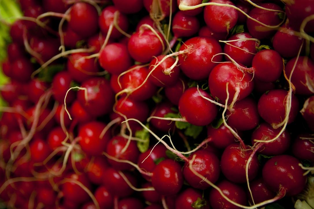 Radishes - Produce Market Page